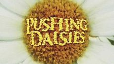 Cancelled Shows 2009: Pushing Daisies gets cancelled!