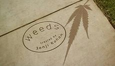 weeds season finale download spoilers