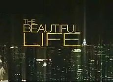Cancelled Shows 2009: The Beautiful Life cancelled by CW after only two episodes