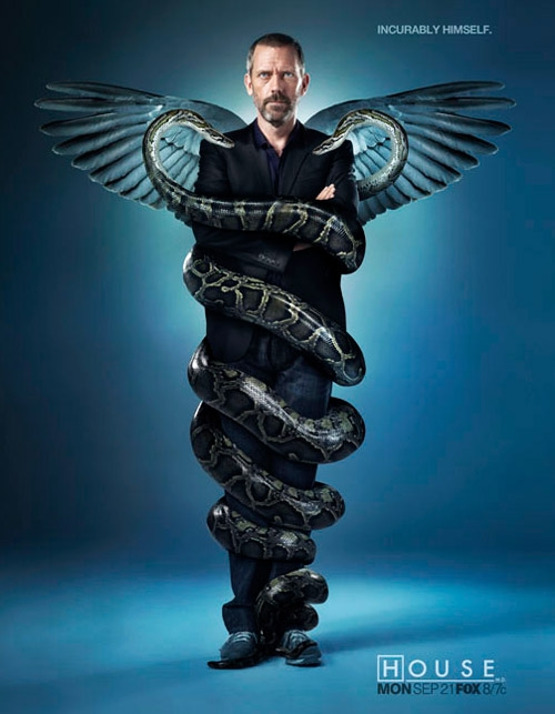 House MD Season Six Wallpaper. Hugh Laurie surrounded with real snakes