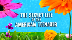 secret life of an american teenager cancelled renewed by abc family