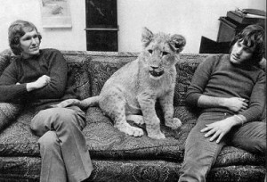 Christian the Lion, At world´s end