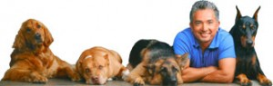 Casting Call: Dogs Auditions for Dog Whisperer with Cesar Millan