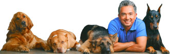 cesar-millan-dog-whisperer-casting-call-auditions