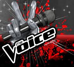 the-voice-winner-is-javier-colon