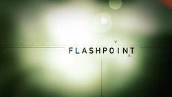 flashpoint-cancelled-renewed-season-five-ctv-ion