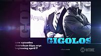 gigolos-cancelled-renewed-season-three-showtime