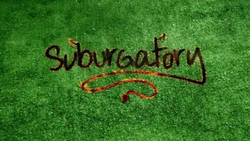 Cancelled and Renewed Shows 2012: ABC renewed Suburgatory for season two