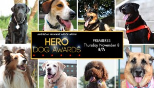 Hallmark Channel premieres Hero Dogs  Special Movie Event November 6 thru November 8
