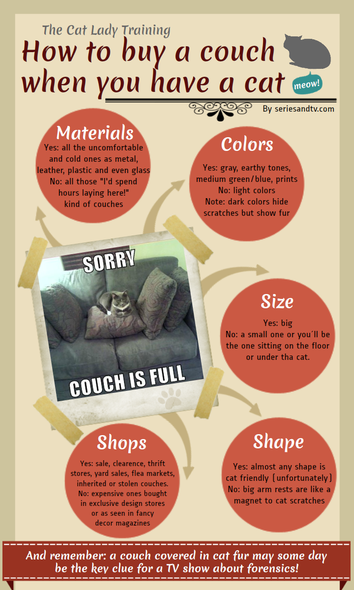 buy-couch-cat-infographic