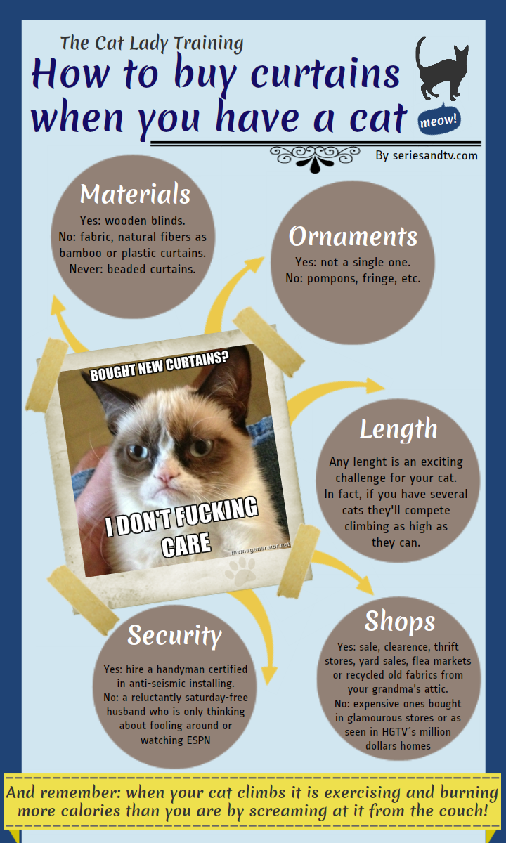 how-buy-curtains-cat-infographic