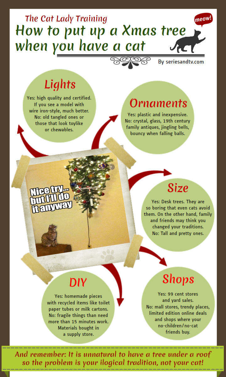 how-put-up-christmas-tree-cat-infographic