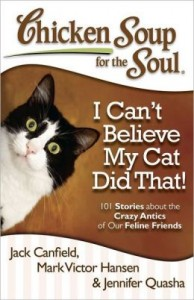cant-believe-cat-did-that-chicken-soup-soul-book-review