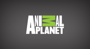 Five Craziest Moments on Animal Planet