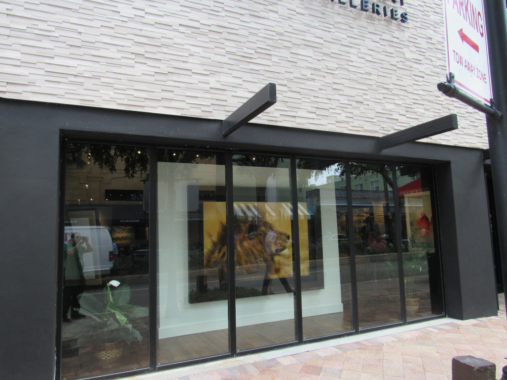 national geographic gallery las olas boulevard fort lauderdale
