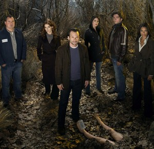 Cancelled Shows 2010: The Forgotten cancelled by ABC