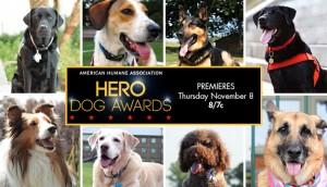 Hallmark Channel premieres Hero Dogs  Special Movie Event November 6 thru November 8