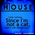 houseism-i-was-curious-since-im-not-cat-thats-not-dangerous